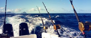 Big-Game-fishing-image-4